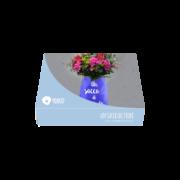 box-coccole-un-sacco-di-fiori